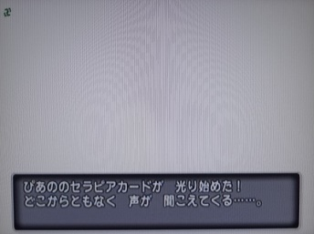 DSC06547.JPG
